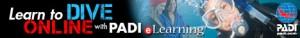 Open Water Static Banner 2 1 300x38 - Scuba Diving Certifications