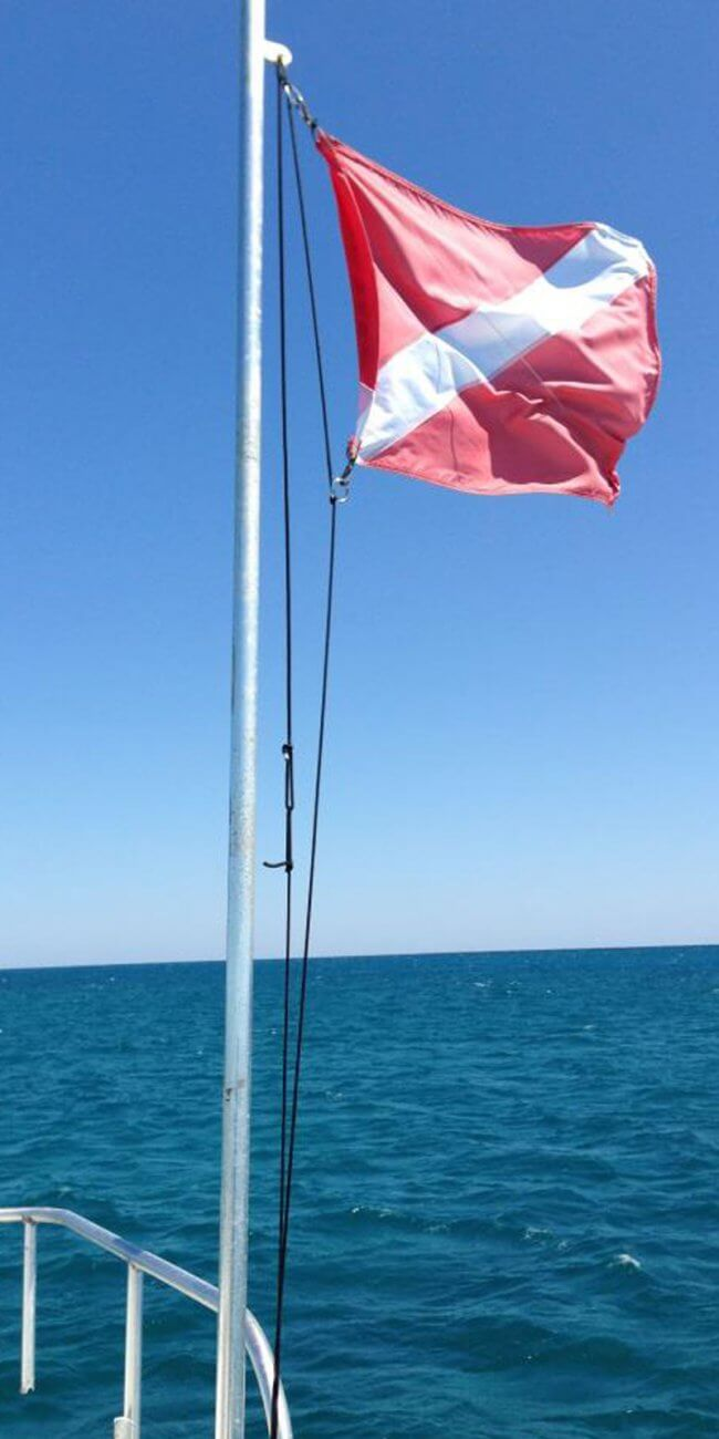 diving key west florida flag 650x1300 - Lost Reef Adventures Home