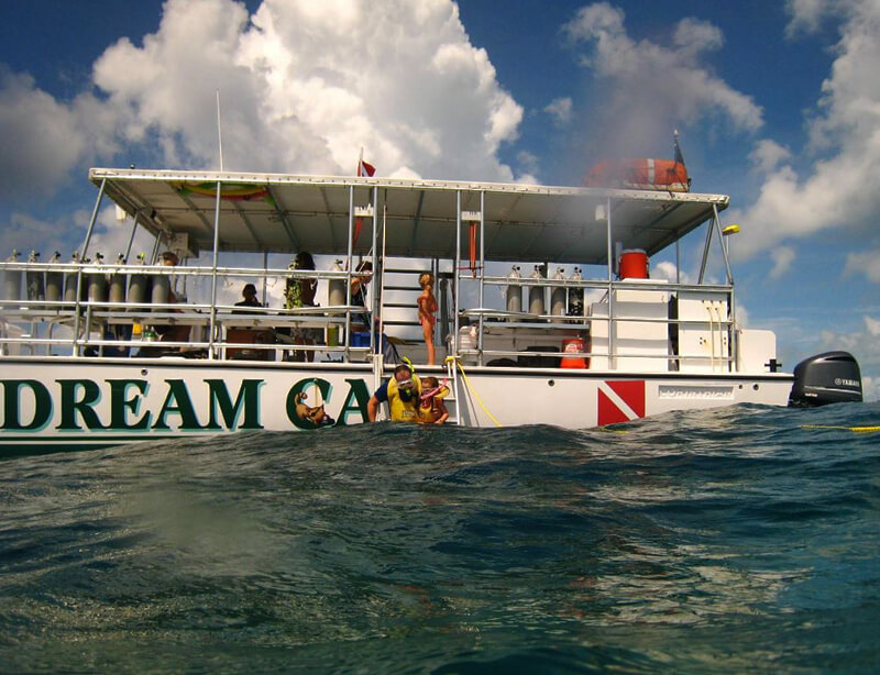 special excursions service image2 - Lost Reef Adventures Home