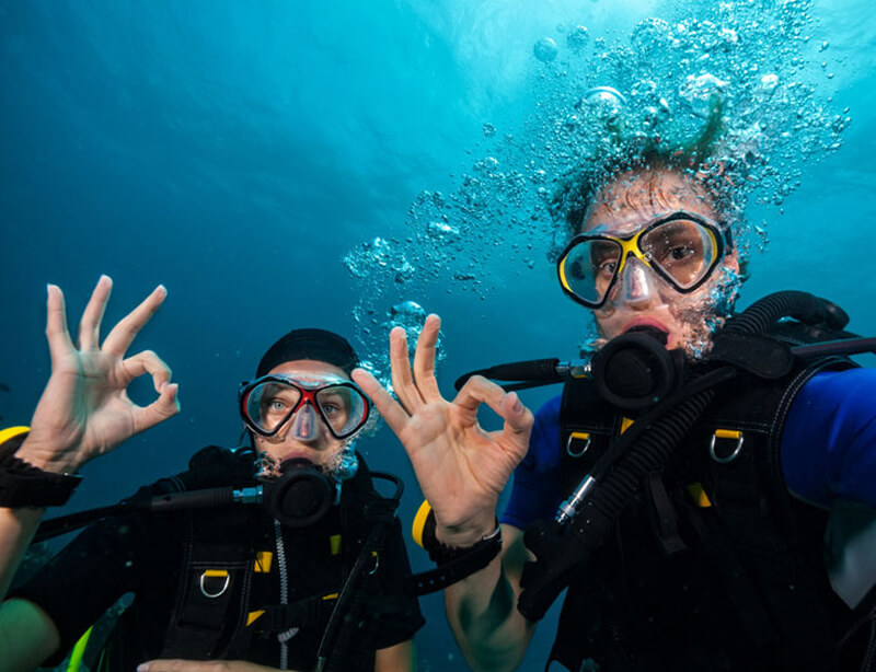 dive guide - Key West Diving Trips