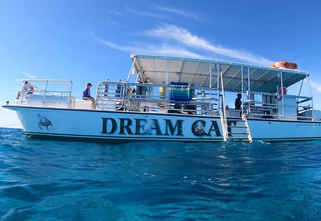 dream cat private charter key west - Private Key West Charter