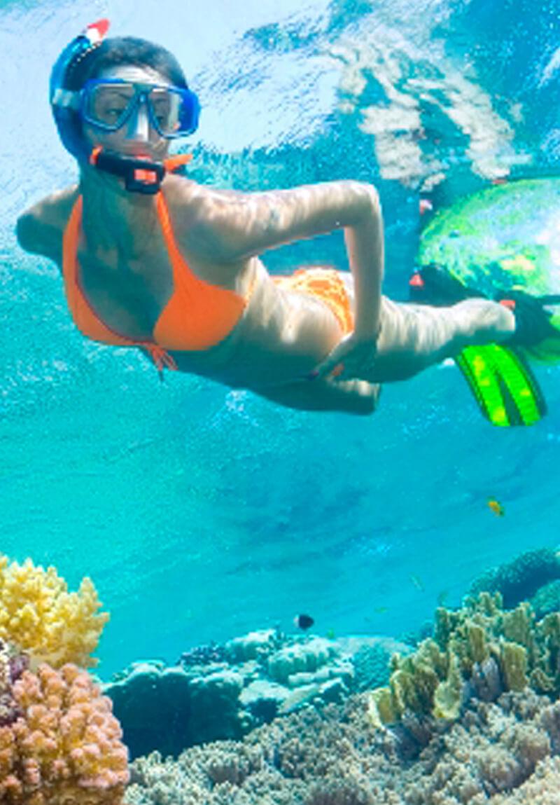 key west snorkeling service - Services