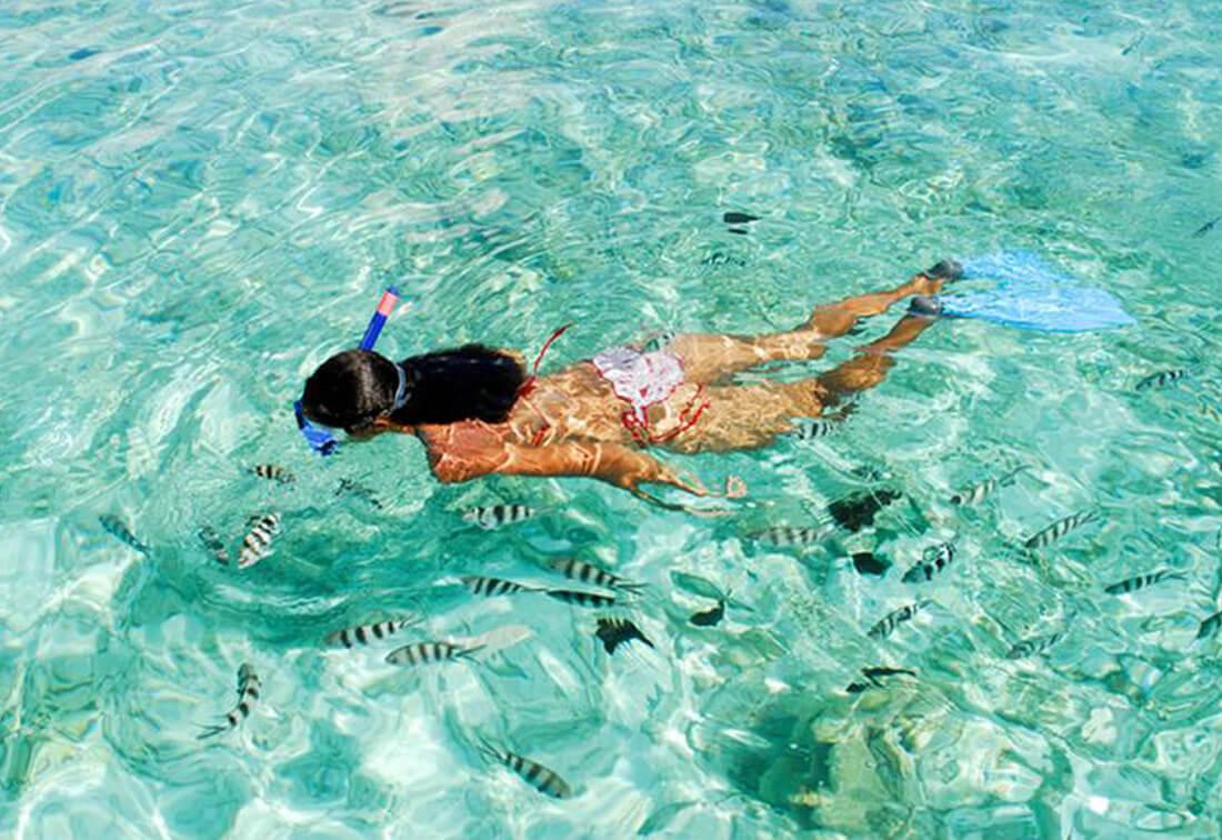 morning snorkel trip key west - Snorkeling In Key West