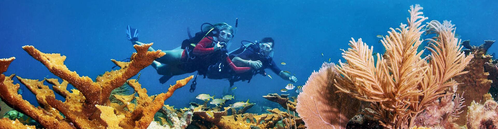Dive Sites, Key West, FL