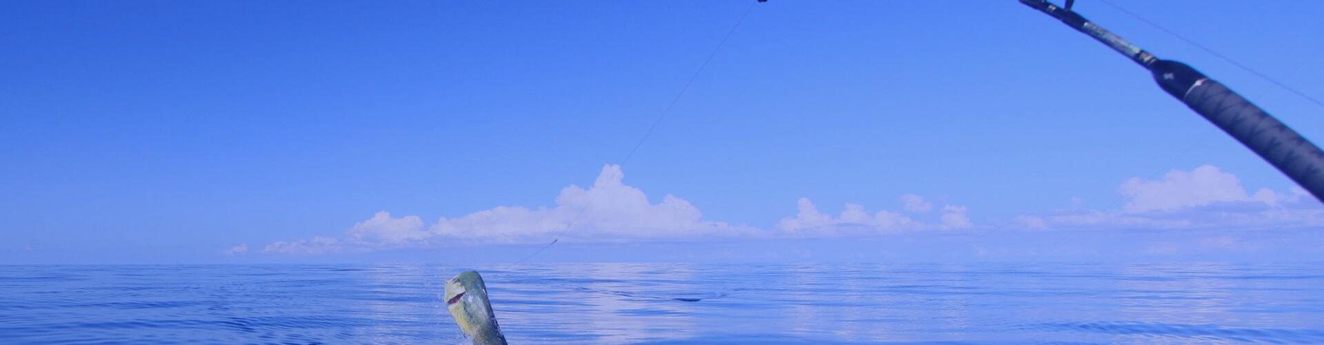 Key West Fishing Charter