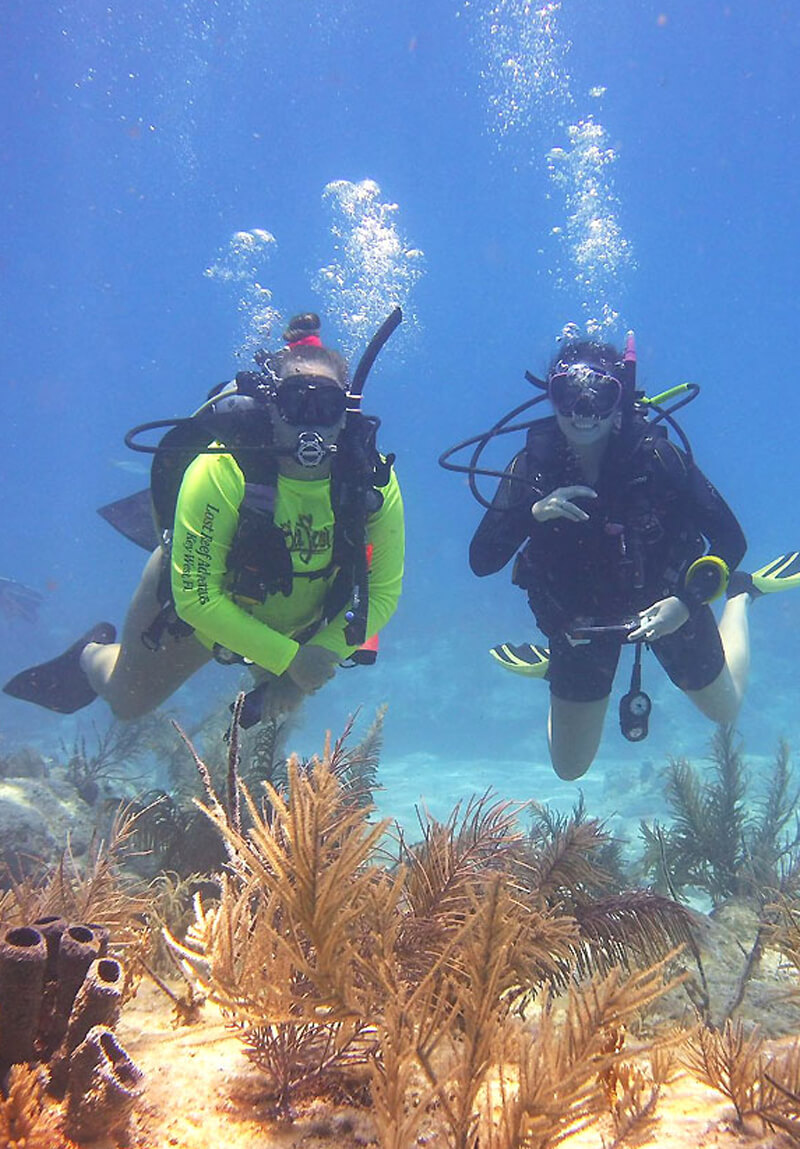 standards lra - Key West Diveshop